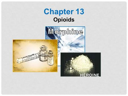 Chapter 13 Opioids.
