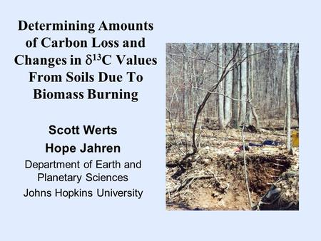 Determining Amounts of Carbon Loss and Changes in  13 C Values From Soils Due To Biomass Burning Scott Werts Hope Jahren Department of Earth and Planetary.