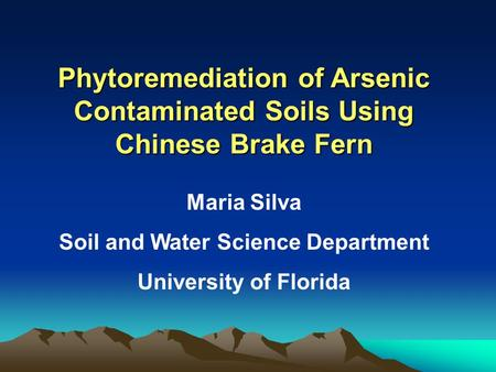 Phytoremediation of Arsenic Contaminated Soils Using Chinese Brake Fern Maria Silva Soil and Water Science Department University of Florida.
