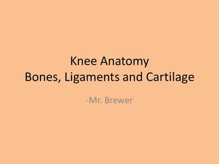 Knee Anatomy Bones, Ligaments and Cartilage -Mr. Brewer.