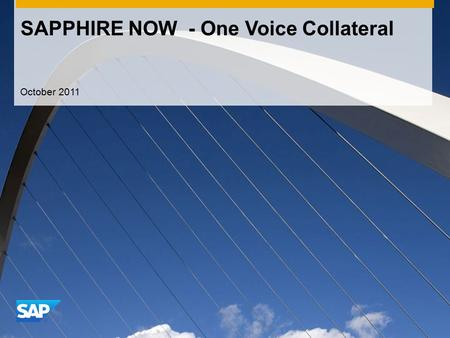 SAPPHIRE NOW - One Voice Collateral October 2011.