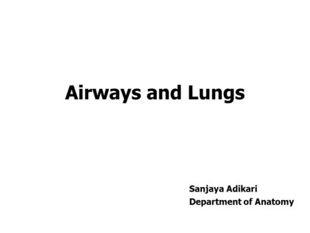 Airways and Lungs Sanjaya Adikari Department of Anatomy.