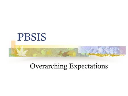 PBSIS Overarching Expectations. Hallway Expectations.