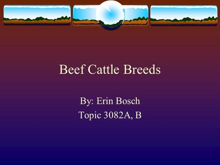 Beef Cattle Breeds By: Erin Bosch Topic 3082A, B.