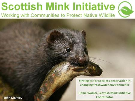 Strategies for species conservation in changing freshwater environments Hollie Walker, Scottish Mink Initiative Coordinator John McAvoy.