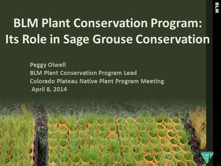 BLM Plant Conservation Program: Its Role in Sage Grouse Conservation