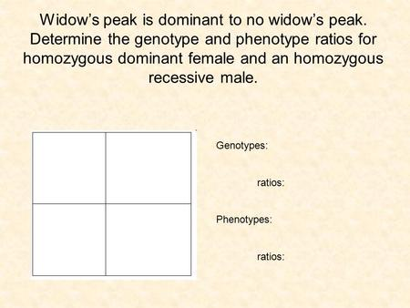 Widow's peak is dominant to no widow's peak
