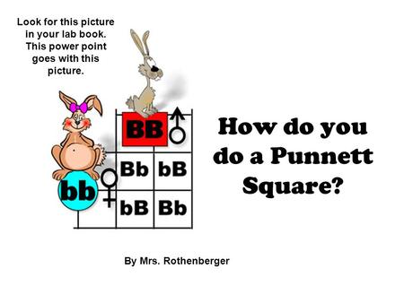 How do you do a Punnett Square? By Mrs. Rothenberger Look for this picture in your lab book. This power point goes with this picture.