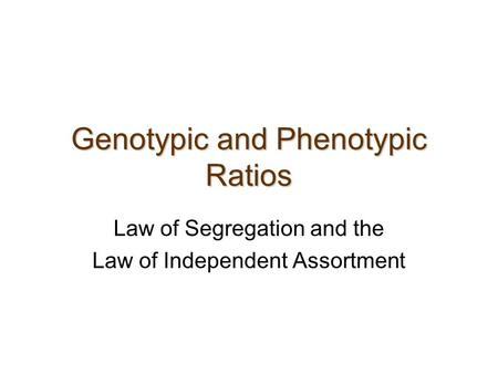 Genotypic and Phenotypic Ratios Law of Segregation and the Law of Independent Assortment.