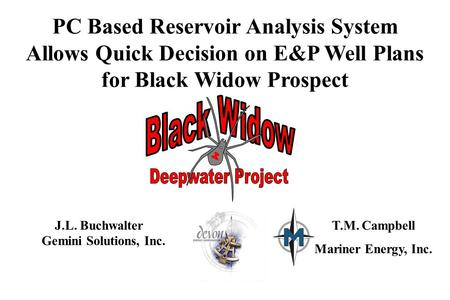 PC Based Reservoir Analysis System Allows Quick Decision on E&P Well Plans for Black Widow Prospect J.L. Buchwalter Gemini Solutions, Inc. T.M. Campbell.