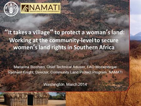 """It takes a village"" to protect a woman's land: Working at the community-level to secure women's land rights in Southern Africa Marianna Bicchieri, Chief."