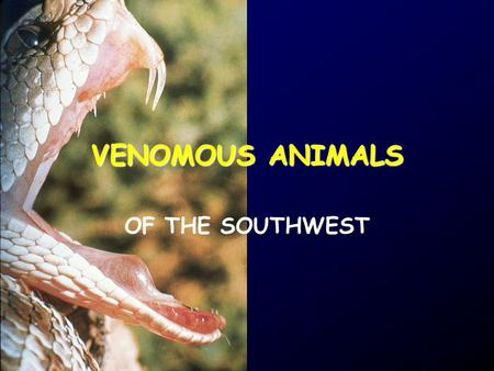 VENOMOUS ANIMALS OF THE SOUTHWEST. WHY TALK ABOUT VENOMOUS ANIMALS? SO THAT YOU'RE NEITHER OVERLY WORRIED…
