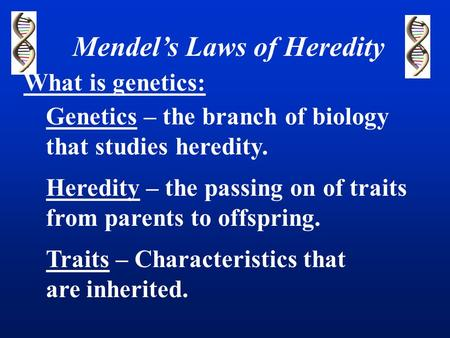 Mendel's Laws of Heredity What is genetics: Genetics – the branch of biology that studies heredity. Heredity – the passing on of traits from parents to.