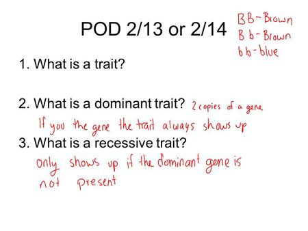 POD 2/13 or 2/14 1. What is a trait? 2. What is a dominant trait? 3. What is a recessive trait?