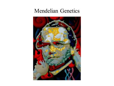 Mendelian Genetics. Genes and The Environment The product of a genotype is generally not a rigidly defined phenotype, but a range of phenotypic possibilities,