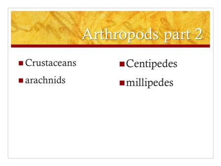Arthropods part 2 Crustaceans arachnids Centipedes millipedes.