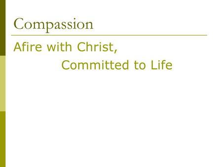 Compassion Afire with Christ, Committed to Life. Christ was Afire with Abba.