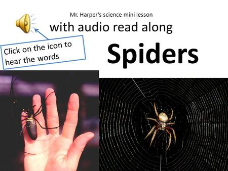 Click on the icon to hear the words Spiders Mr. Harper's science mini lesson with audio read along.
