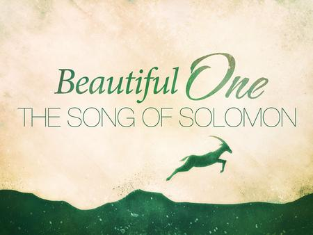 Song of Solomon. A Song Among Songs A Unique Challenge: Four Primary Views –Marriage of Solomon to Shulammite Maiden –The Lust of Solomon & The Love of.