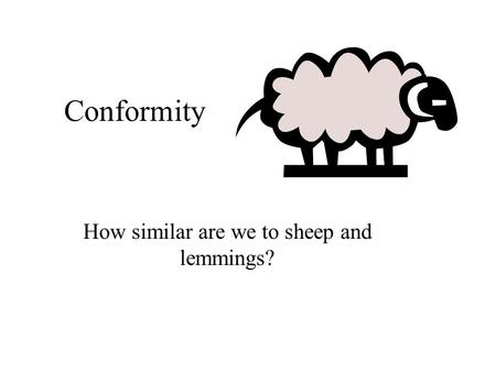 Conformity How similar are we to sheep and lemmings?