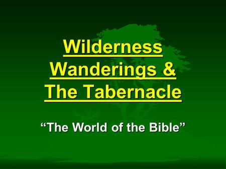 "Wilderness Wanderings & The Tabernacle ""The World of the Bible"""