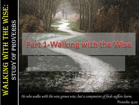 Walking With the Wise: study of Proverbs Walking With the Wise: study of Proverbs He who walks with the wise grows wise, but a companion of fools suffers.