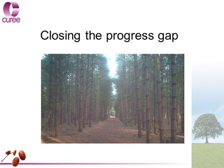 Closing the progress gap. Key issues addressed by the study This study explored: – approaches to closing the gap for disadvantaged pupils –effective leadership.