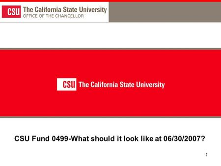 1 CSU Fund 0499-What should it look like at 06/30/2007?