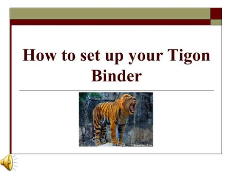 How to set up your Tigon Binder Why do you need a Tigon Binder?  Our team is dedicated to promoting organization through a tested, proactive approach.