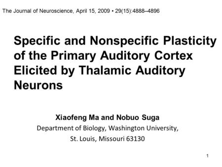 1 Specific and Nonspecific Plasticity of the Primary Auditory Cortex Elicited by Thalamic Auditory Neurons Xiaofeng Ma and Nobuo Suga Department of Biology,