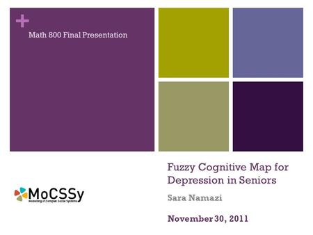 + Fuzzy Cognitive Map for Depression in Seniors Sara Namazi Math 800 Final Presentation November 30, 2011.