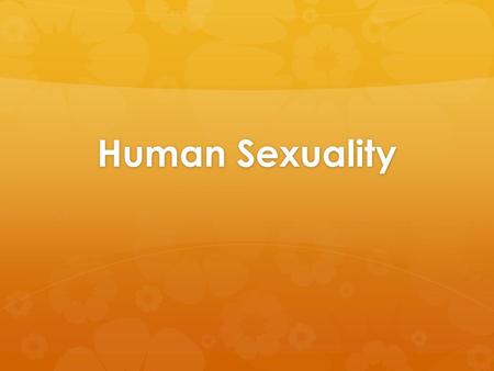 Human Sex Acts 8