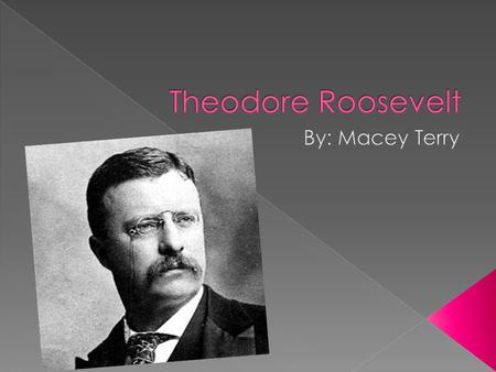  Roosevelt's youth differed sharply from that of the log cabin Presidents. He was born in New York City in 1858 into a wealthy family,