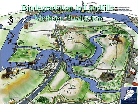 Biodegradation in Landfills: Methane Production .