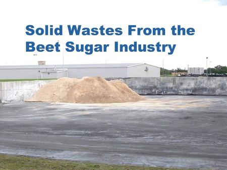 Solid Wastes From the Beet Sugar Industry. List Dirt ** Precipitated calcium carbonate ** Rocks Weeds and beet tailings Limekiln waste Used oil ** Discarded.