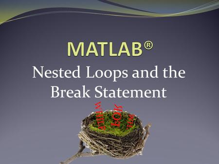 Nested Loops and the Break Statement. What are Nested Loops? Nested loops are: Loops which run inside another loop When would you use nested loops? Performing.