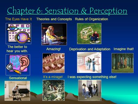 Chapter 6: Sensation & Perception Chapter 6: Sensation & Perception The Eyes Have It The better to hear you with. Sensational Theories and Concepts Amazing!