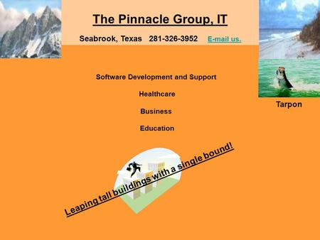The Pinnacle Group, IT Software Development and Support Healthcare Business Education Seabrook, Texas 281-326-3952 E-mail us. E-mail us. Leaping tall buildings.