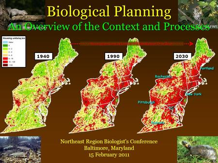 Brian Gratwicke USFWS Biological Planning An Overview <strong>of</strong> the Context and Processes Northeast Region Biologist's Conference Baltimore, Maryland 15 February.