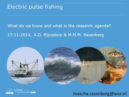 Electric pulse fishing What do we know and what is the research agenda? 17-11-2014, A.D. Rijnsdorp & M.M.M. Rasenberg