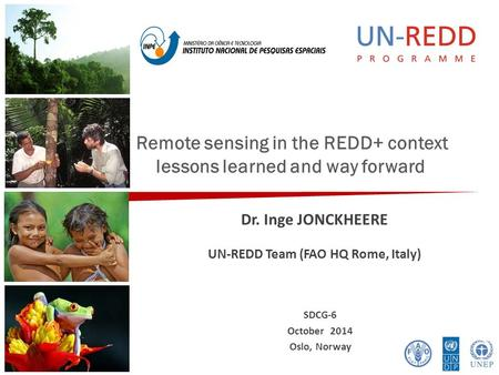 Remote sensing in the REDD+ context lessons learned and way forward Dr. Inge JONCKHEERE UN-REDD Team (FAO HQ Rome, Italy) SDCG-6 October 2014 Oslo, Norway.