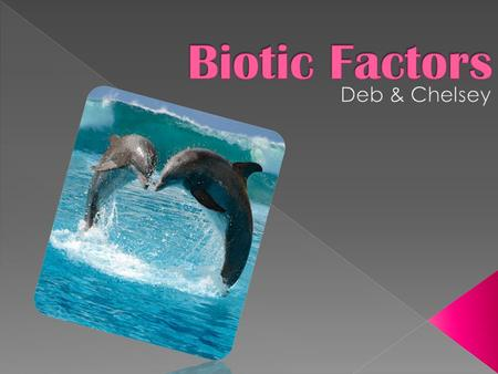 Biotic Factors are all the living parts of an ecosystem. For example: Fish, whales, & seaweed.