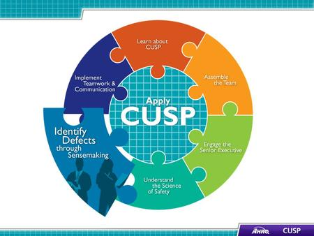 CUSP and Sensemaking Tools 1 CUSP ToolsSensemaking Tools Staff Safety AssessmentDiscovery Form Safety Issues WorksheetRoot Cause Analysis Learn from Defects.