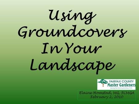 Using Groundcovers In Your Landscape Elaine Homstad, MG, FCMGA February 2, 2010.