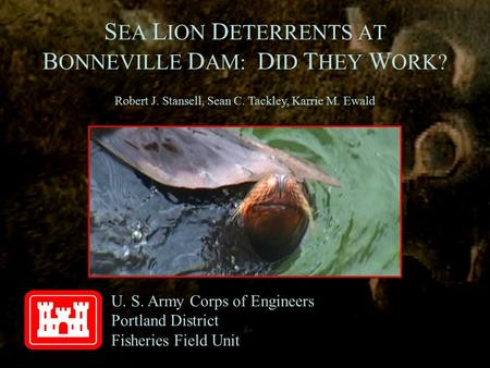 S EA L ION D ETERRENTS AT B ONNEVILLE D AM: D ID T HEY W ORK? U. S. Army Corps of Engineers Portland District Fisheries Field Unit Robert J. Stansell,