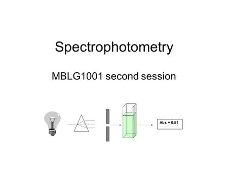 Spectrophotometry MBLG1001 second session Abs = 0.51.