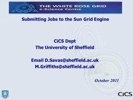 Submitting Jobs to the Sun <strong>Grid</strong> Engine