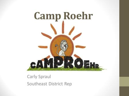 Camp Roehr Carly Spraul Southeast District Rep. What is Epilepsy? Epilepsy is a malfunction in the nervous system that causes seizures. Because of these.