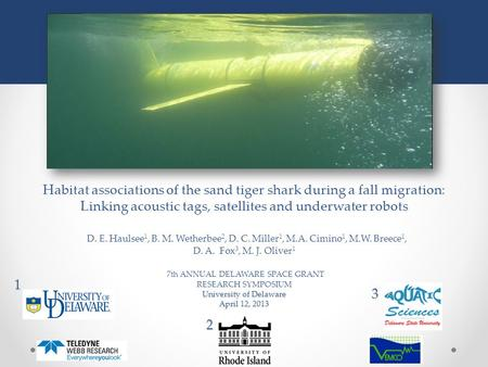 University of Delaware April 12, 2013 Habitat associations of the sand tiger shark during a fall migration: Linking acoustic tags, satellites and underwater.