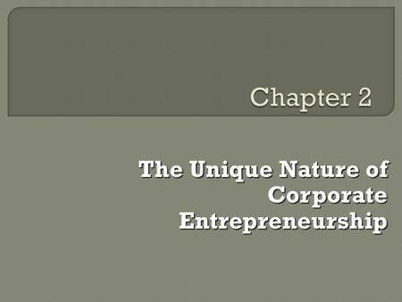 The Unique Nature of Corporate Entrepreneurship